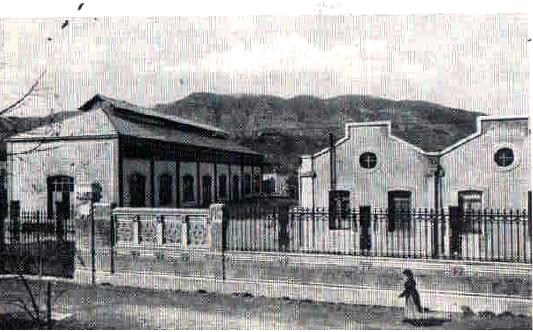 Ipsia pertini nel 1909