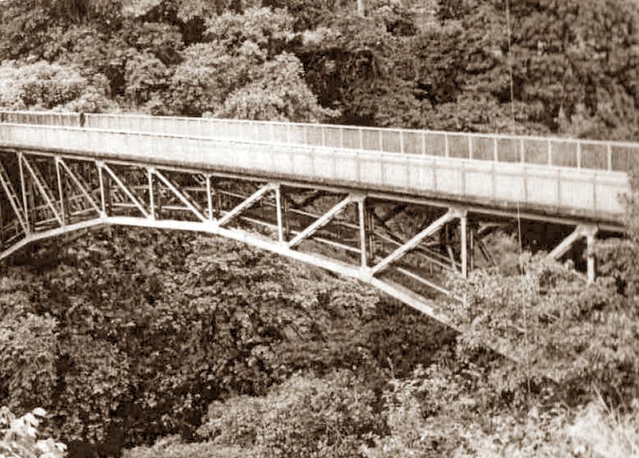Il ponte progettato da Corradi