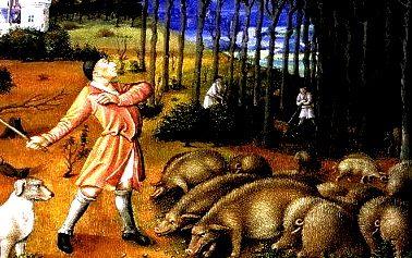 Terni 1629: pene severe per chi alleva porci in città